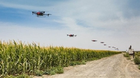 無人機飛上農業舞臺
