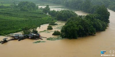 航拍江西婺源遭強降雨襲擊 景區全部臨時關停