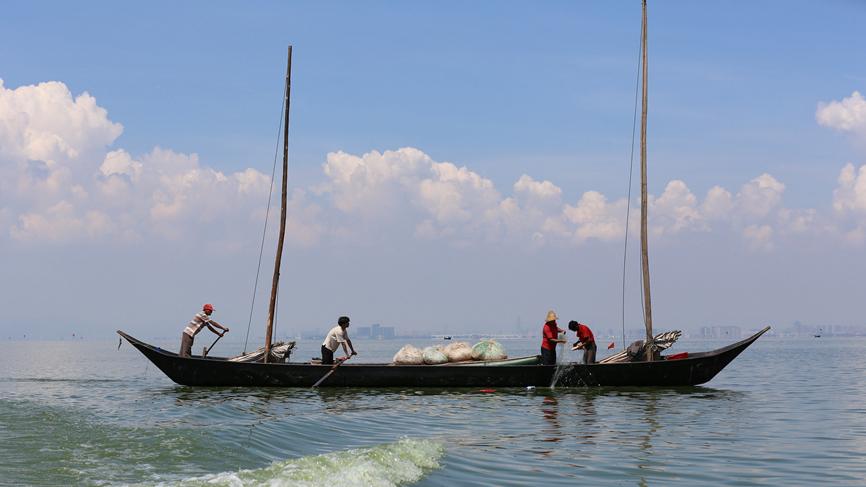 雲南昆明:滇池捕魚忙 漁民喜豐收