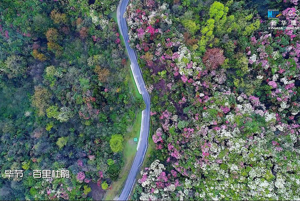 新華網航拍:綠色貴州 如詩畫卷
